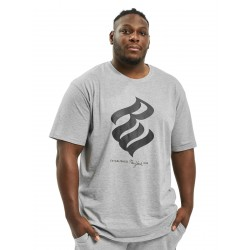Rocawear / T-Shirt Big in grey